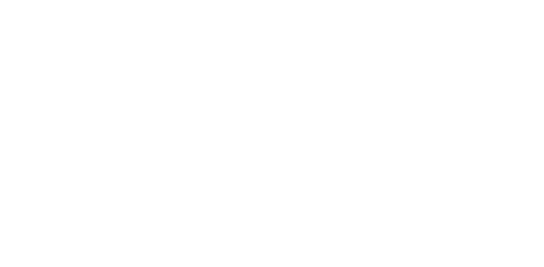 Bartz Viviano Flowers & Gifts